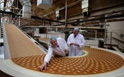 طرح توجیهی تولید بیسکویت ساده، میشکا و نان و شیرینی
